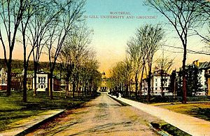 Postcard of McGill University, Toronto, Ontari...