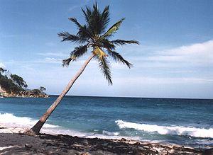 Playa de Cayo Levantado