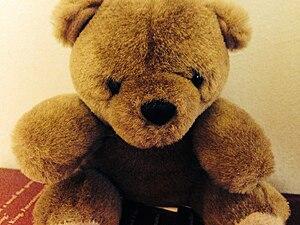 English: A teddy bear named Tommy.