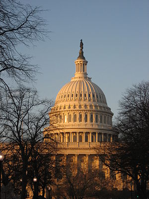 The dome of the Capitol, Washington DC, USA. T...