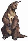 Megatherum DB.jpg