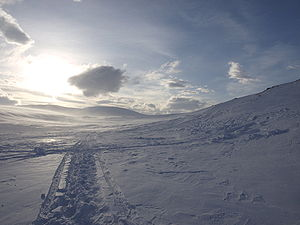 English: Tracks of skis in snow in the Sarek N...