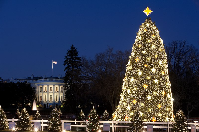 File:White House and the National Christmas Tree in Washington, D.C., Dec. 16, 2009.jpg