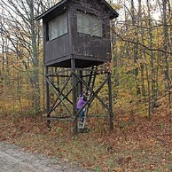 High Chair Deer Stand Power Wheel Chairs Tree Wikipedia Elevated Box Type Hunting Blind