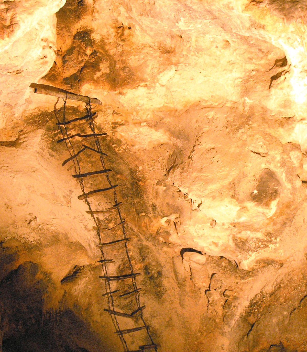 Ladder  Simple English Wikipedia the free encyclopedia