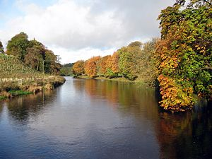 The River Wharfe upstream of Hebden Suspension...