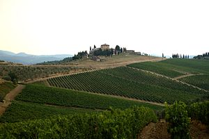 Tuscany, Italian wine region of Chianti