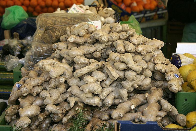 File:- Ginger -.jpg - Wikimedia Commons