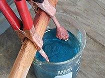 CopperII sulfate  Wikipedia