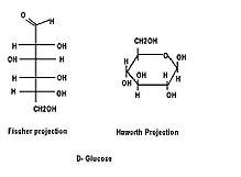 ️ Trioses tetroses pentoses hexoses. Glycobiology Analysis