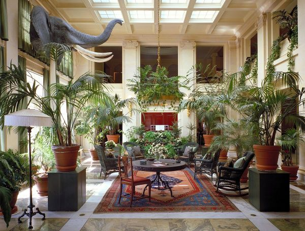 George Eastman House Motion Collection - Wikipedia