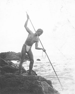 English: Hawaiian spear fisherman near Hana; M...