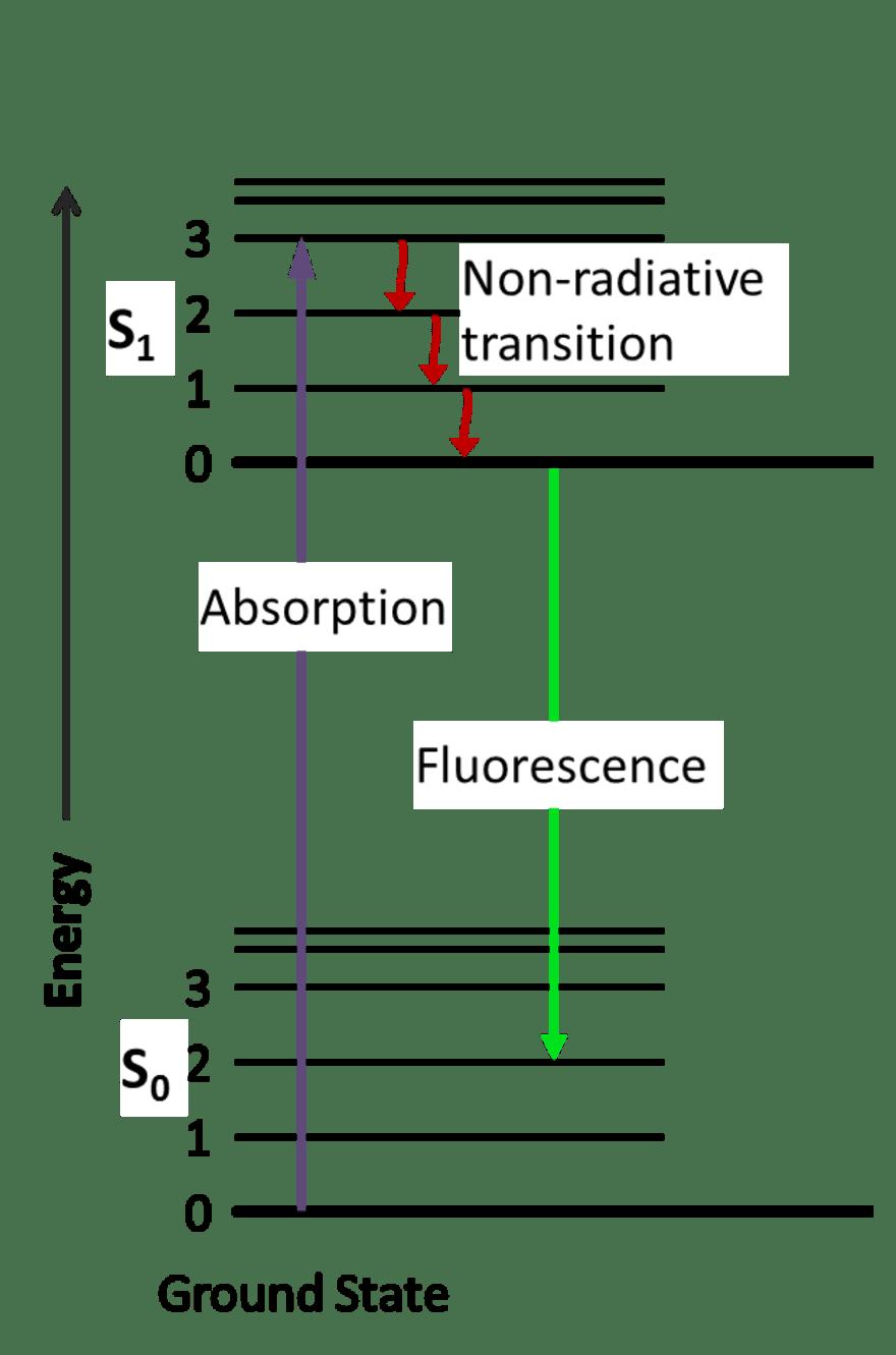 medium resolution of fluorescence diagram