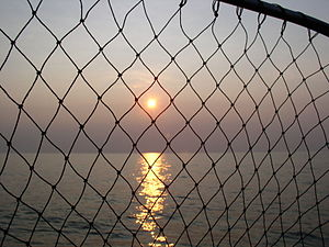 Lake Erie Sunset with fish net