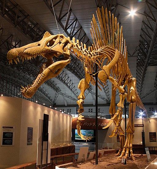 Mounted Spinosaurus