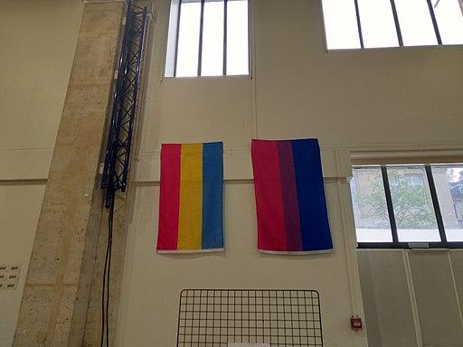 Printemps des assoces 2019 drapeaux bi et pan
