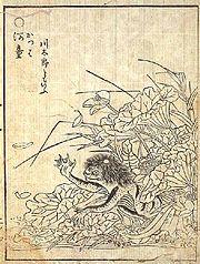 Raffigurazione di un kappa in una stampa giapponese del Settecento