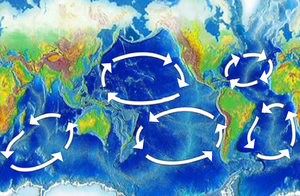 There are five major ocean-wide gyres — the No...