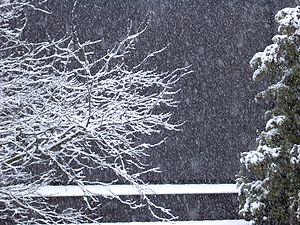 Schnee - 2005