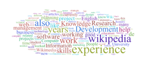 A word cloud generated from the skills stateme...