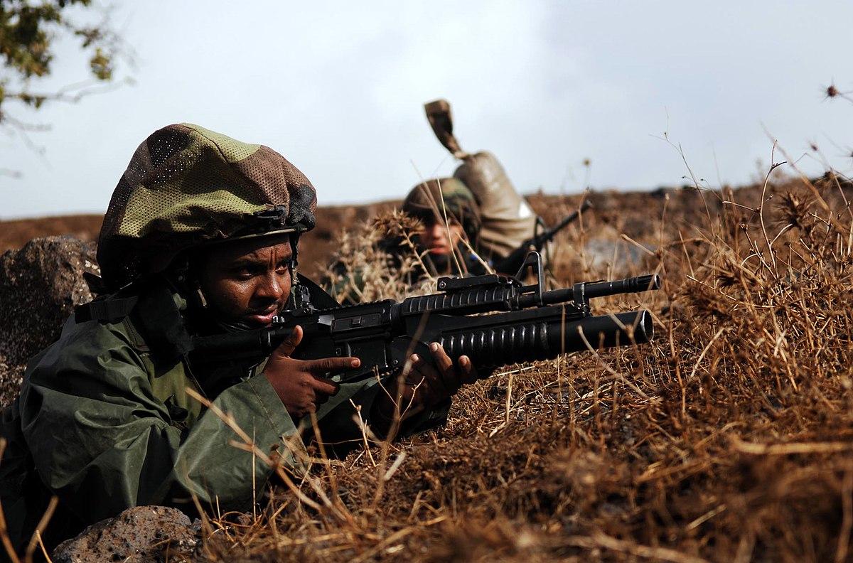Mitznefet Israeli military  Wikipedia