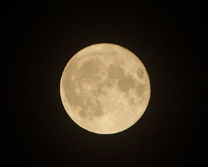 "Perigee-syzygy or ""Supermoon"" is a f..."