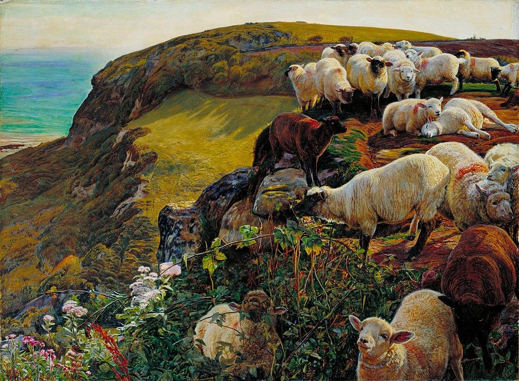 Finding Lost Sheep Shepherd
