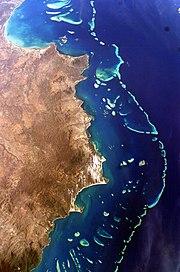 Australian iso valliriutta