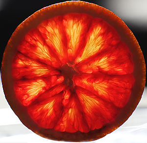 This picture shows a blood orange.