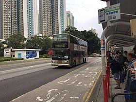 九龍巴士40線 - 維基百科,自由的百科全書