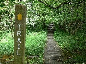 English: Rail Trail Board walk over a boggy ar...