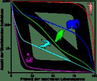 Fortpflanzungsstrategie  Wikipedia