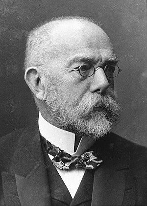 Portrait of Robert Koch (1843—1910).