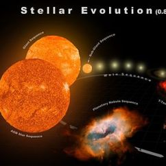 Diagram Of A Low Mass Star Life Cycle Dsc Keypad Wiring Stellar Evolution Wikipedia Red Giant Branch Phase Edit
