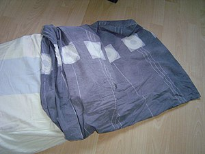 a pillow case (or pillow slip), with the pillo...