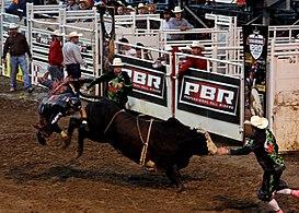 professional bull riders wikipedia