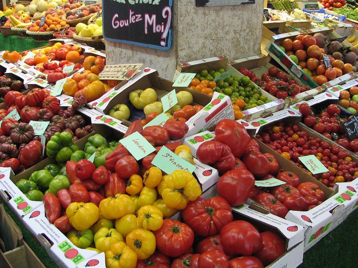 Tomates anciennes.jpg