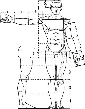 Les Paul Body Miranda Lambert Body Wiring Diagram ~ Odicis