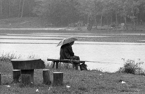 Rain, umbrella, bench, fishing Fortepan 84944