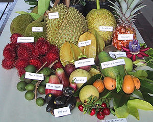 Pili nut and other tropical fruits