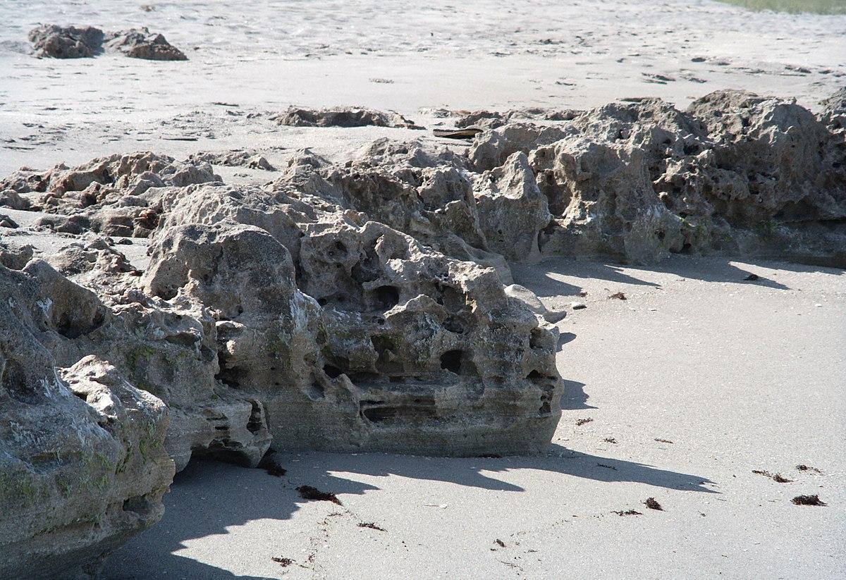 Blowing Rocks Preserve  Wikipedia