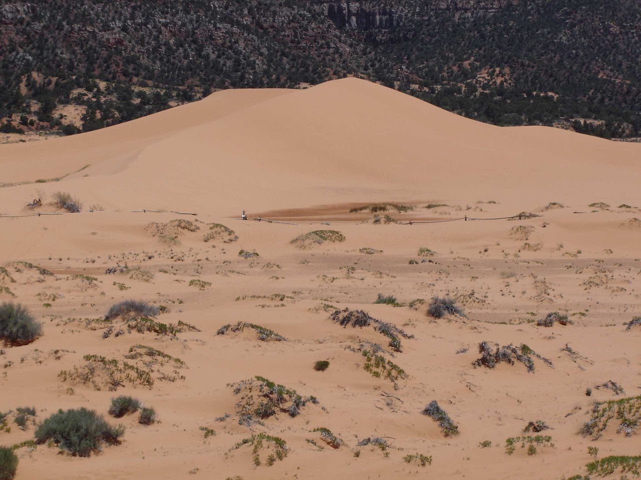 types of sand dunes diagram what are bubble gph 111 arid lands