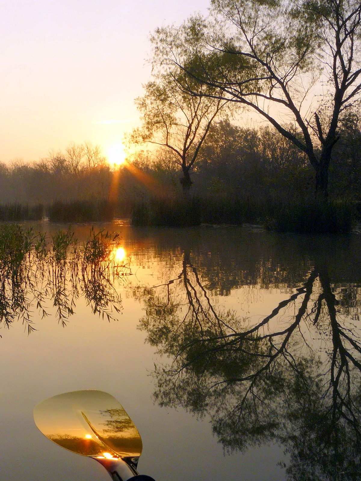 Deep Fork River Wikipedia