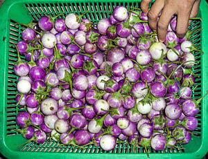 Makhuea - Thai aubergines.
