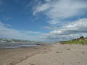 Pinery Provincial Park - Dunes Beach