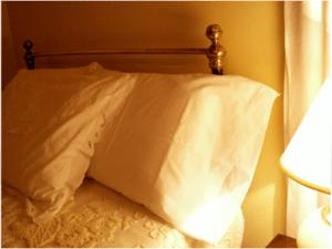 Casais Estacios Pillows