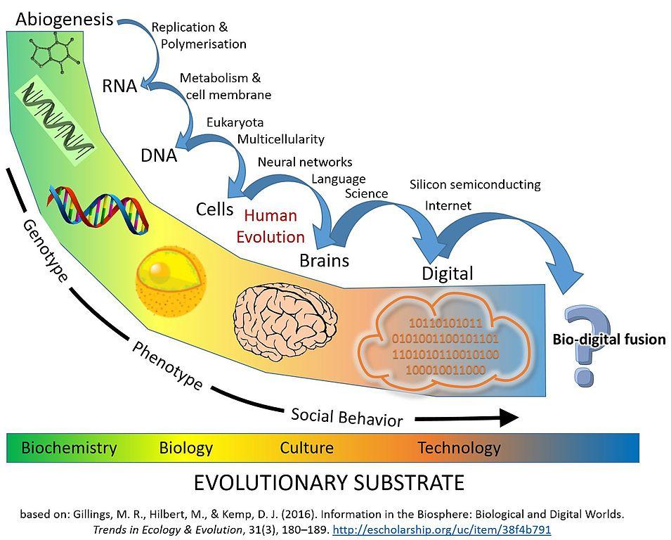 Energy Transition Boundaries With Diagram File Major Evolutionary Transitions Digital Jpg