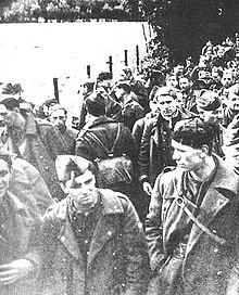 敦克爾克戰役 - 維基百科,自由的百科全書