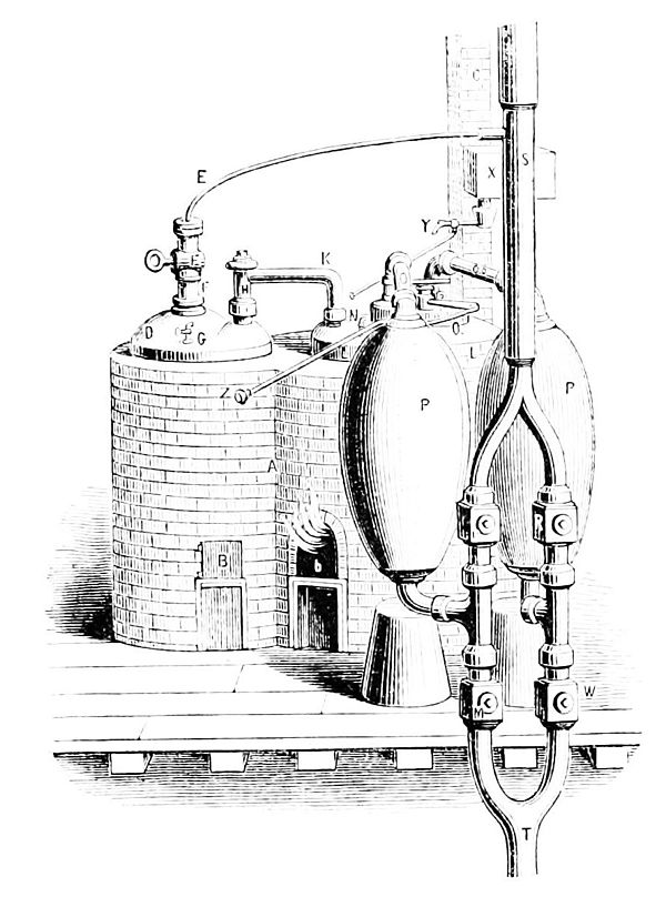 Popular Science Monthly/Volume 12/November 1877/The Growth