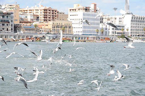 Port said egypt (6)